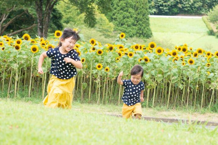 2019/8/31まで夏季休業中の受付について